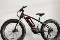 Fantic Fat Sport 24 Junior E-Bike
